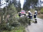 Sturmschaden Richtung Wolfenreith_3